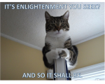 Meme: Seeking Enlightenment